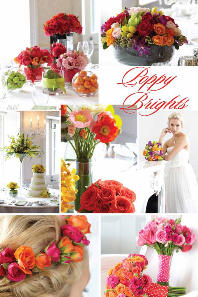 Clockwise from top left: Kavelle Flowers, Vesna Grasso Floral Designer, Vesna Grasso Floral Designer, Kavelle Flowers, Kavelle Flowers, The Feather Rose, Tulipanna